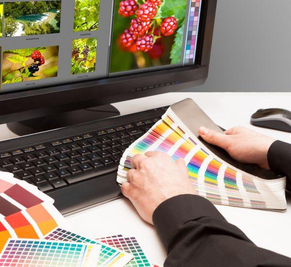 Designer Choosing Colour Samples